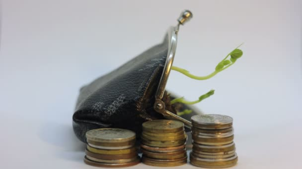 Golden coins and purse with young plant growing and dying. Money growth increase concept and falling