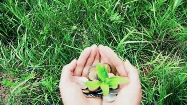 ženská ruka držící hromadu mincí s rostoucími rostlinama, koncept růstu finančních financí