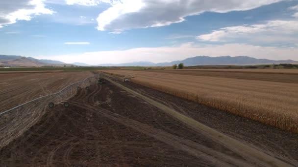 Letecký pohled na kukuřičném poli při létání na kamiony tak kombinovat řezání stonky.