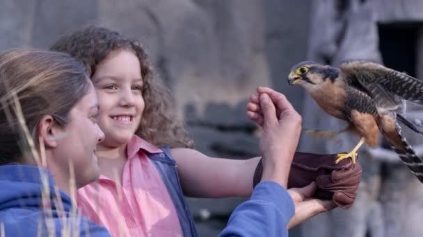 Zeitlupe: Falke landet auf Handschuhmädchen, als Trainer ihr hilft.