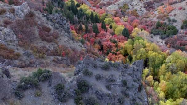 Légifelvételek a hegyek között színes erdei kilátással