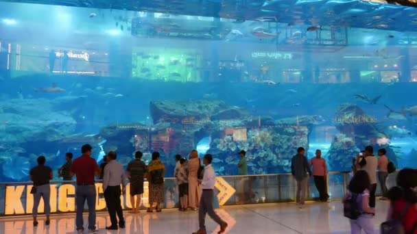 Dubai, United Arab Emirates - June 5, 2018:A stunning view of a huge aquarium with five meter high walls and moving slowly sharks and other fish in it. The tourists look at it excitedly.
