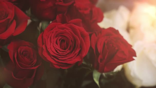 Červené růže s krásnou okvětní lístky a Rosa skvrny sluší v kiosku romantické detailní pohled na červených růží s křehkými plátky, jemná vůně a trnitými stonky do kbelíku v butiku. Jsou moc hezká,