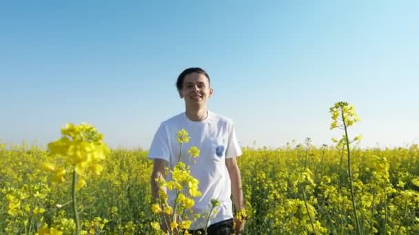 Jolly young man hiking in a rapeseed field on a sunny day in slow motion                                   Amazing view of a cheery young man in a white T-shirt going and touching yellow rapeseed flowers in a field in summer in slo-mo