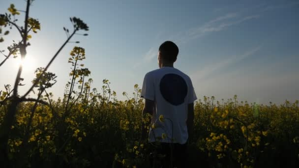 Young man standing in an agro field and enjoying the view of a splendid sunset                        Atry back view of a young brunet man in a white T-shirt and black pants standing in a blossoming field and enjoying the picturesque view of sunset