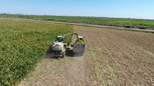 Légi felvétel egy kombájnról, amint szójababot kap és traktordobozba önti. Eredeti madártávlatból nézi, ahogy egy mozgó kombájn összegyűjti a szójababot, és egy traktordobozban szitálja egy alacsonyan repülő drónból egy hatalmas mezőn nyáron.