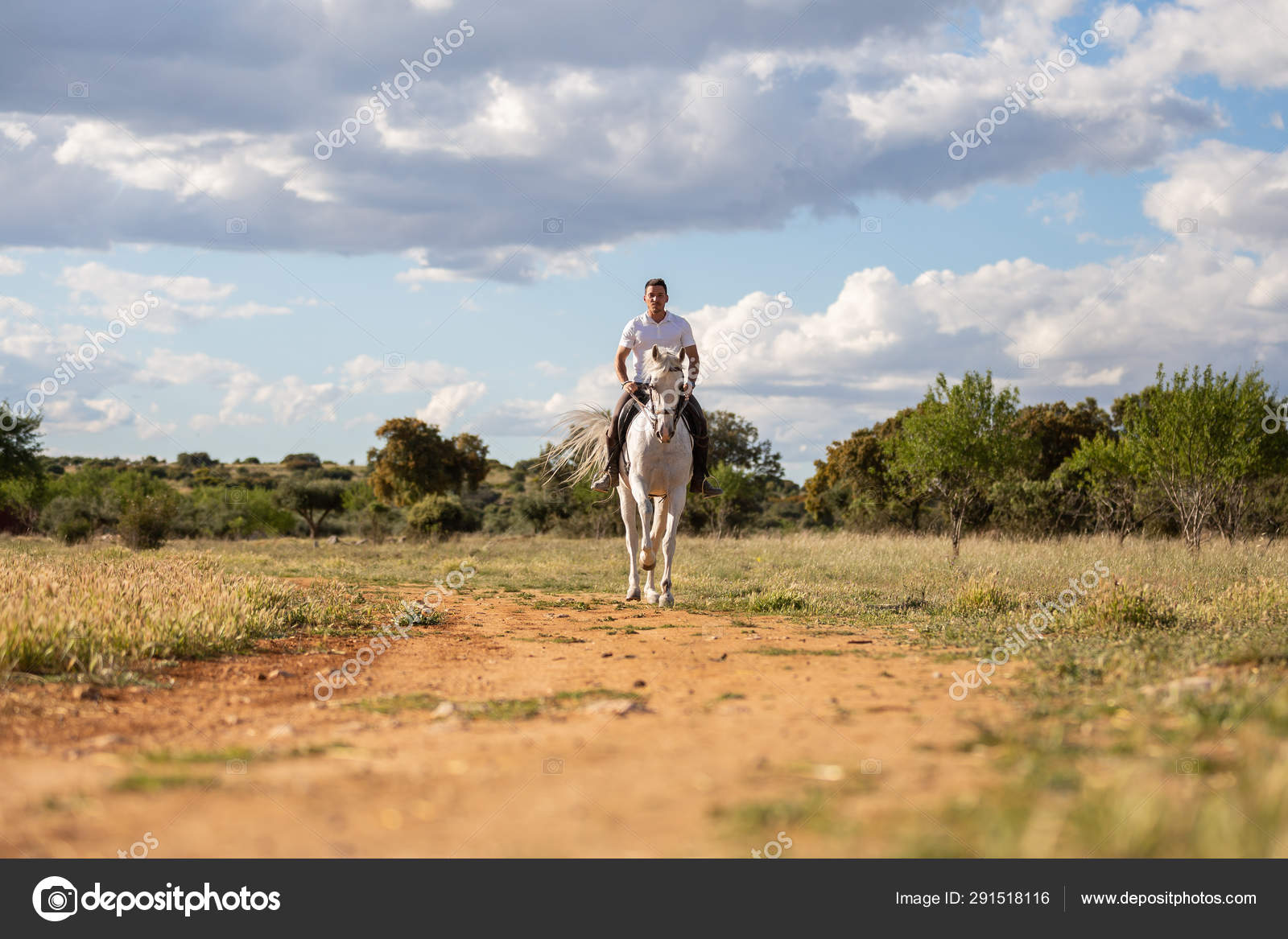 Young Guy Casual Outfit Riding White Horse Sandy Road Stock Photo C Pablobenii 291518116