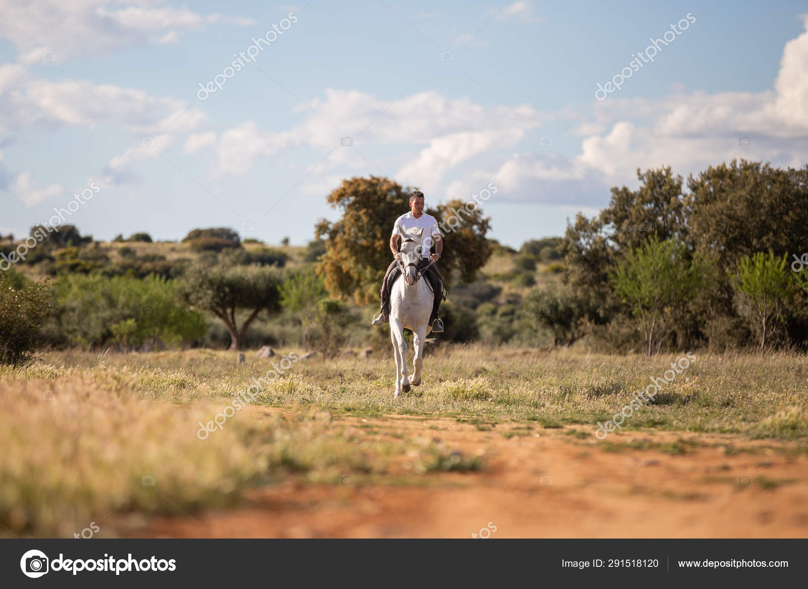 Young Guy Casual Outfit Riding White Horse Sandy Road Stock Photo C Pablobenii 291518120
