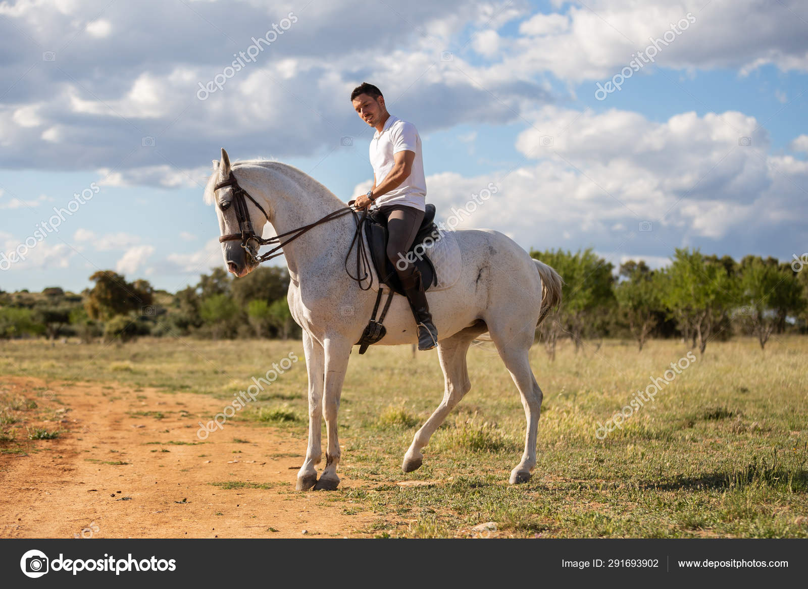 Young Guy Casual Outfit Riding White Horse Meadow Sunny Day Stock Photo C Pablobenii 291693902