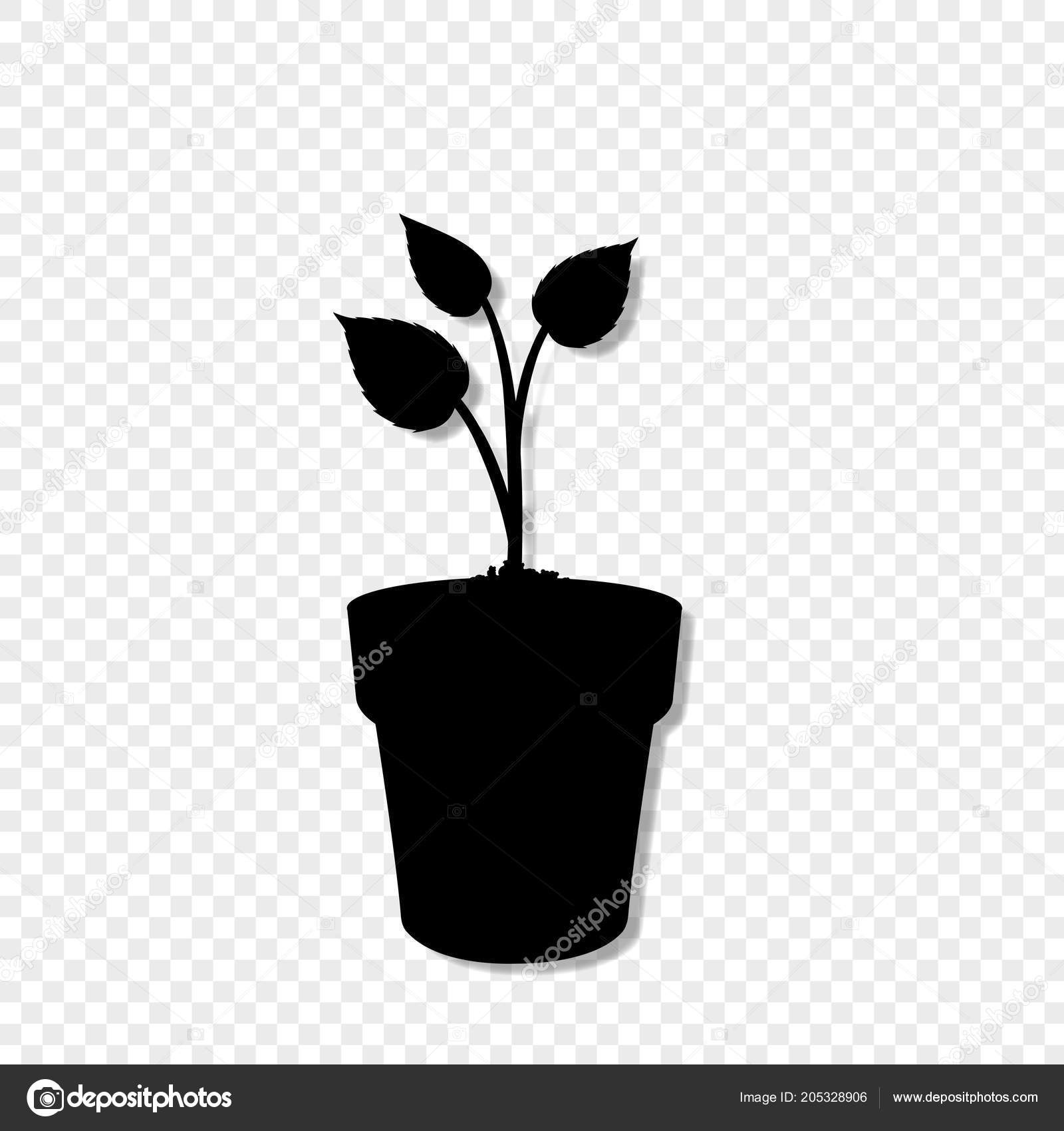 Black Silhouette Of Sprouting Plant In The Pot Isolated On Transparent Background Seeding Vector Illustration Icon Sign Template For Design