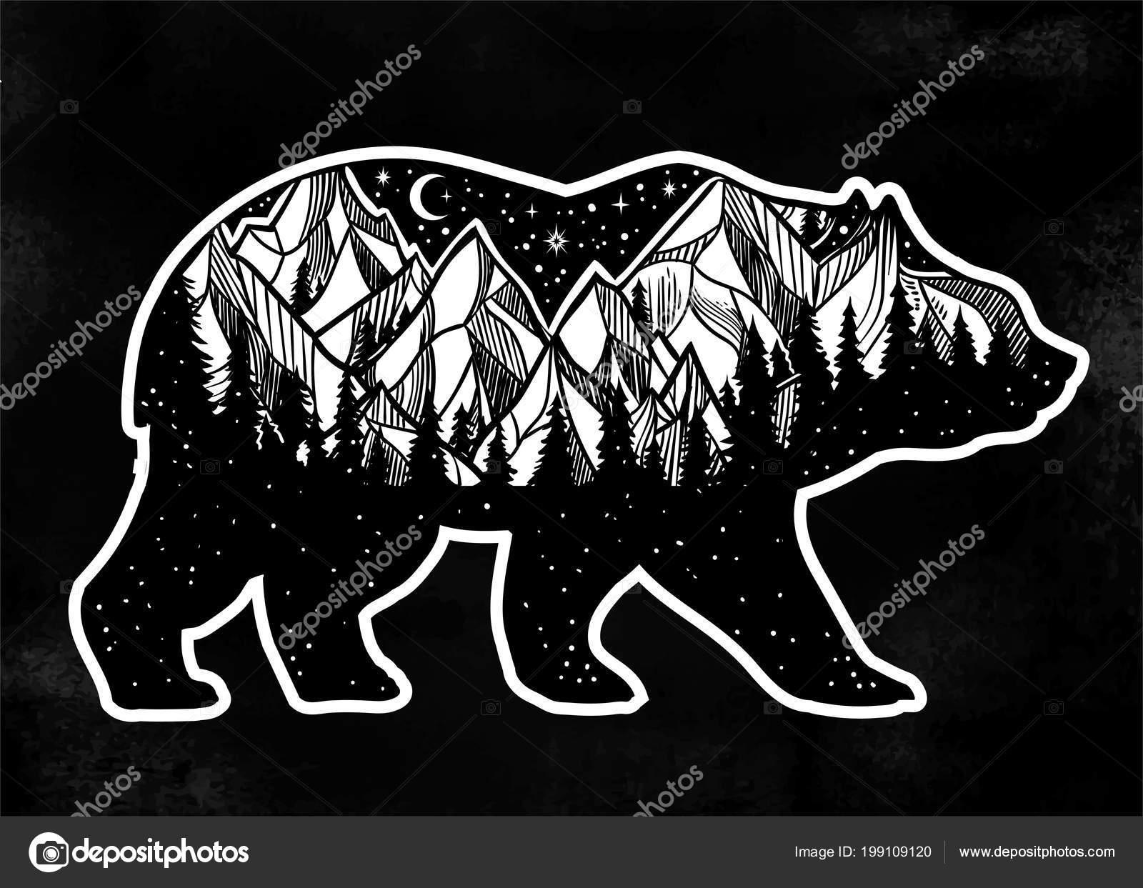 Ours Et Nuit Foret Paysage De Montagne Double Exposition Art