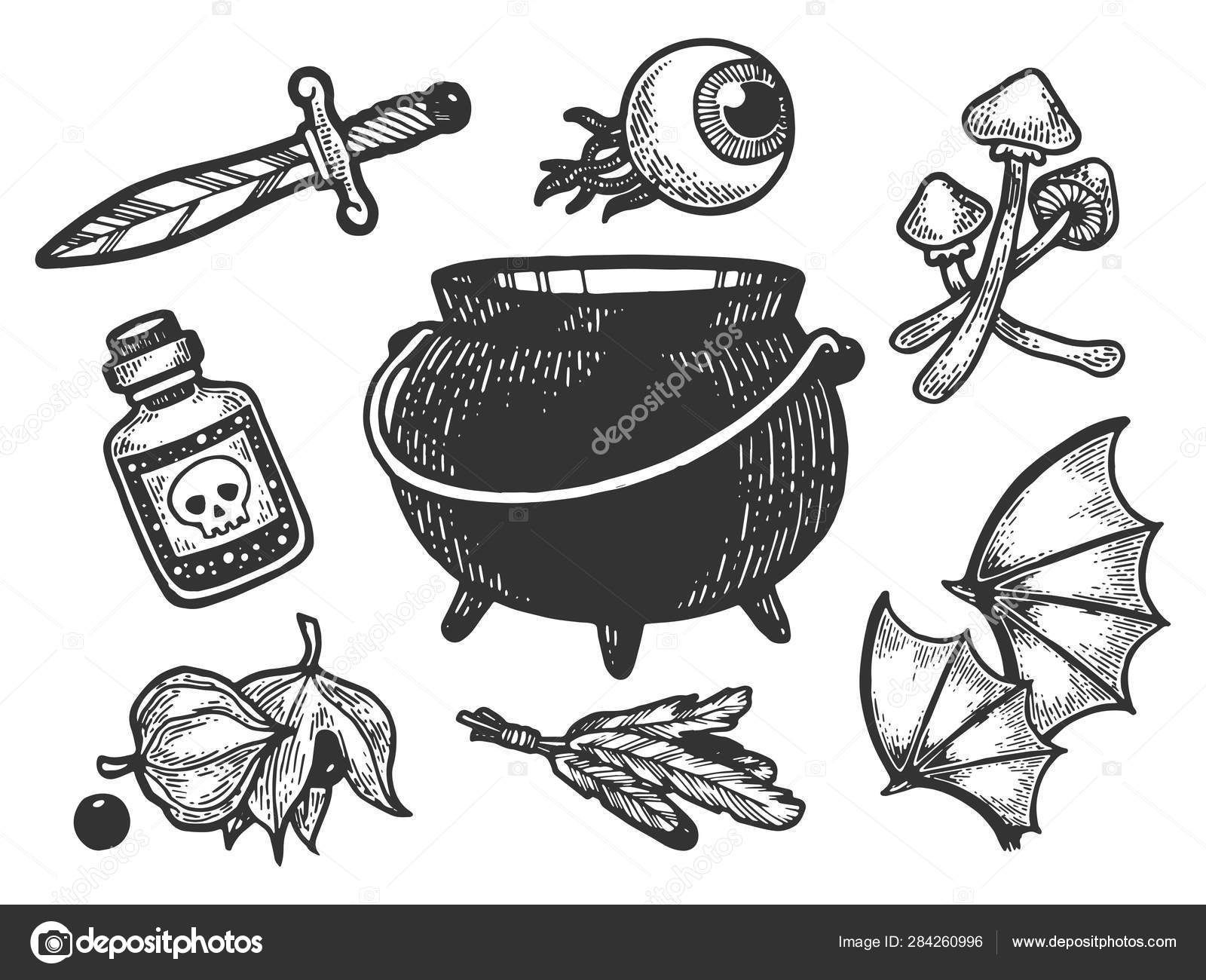 Magical fabulous witch ingredients items sketch engraving