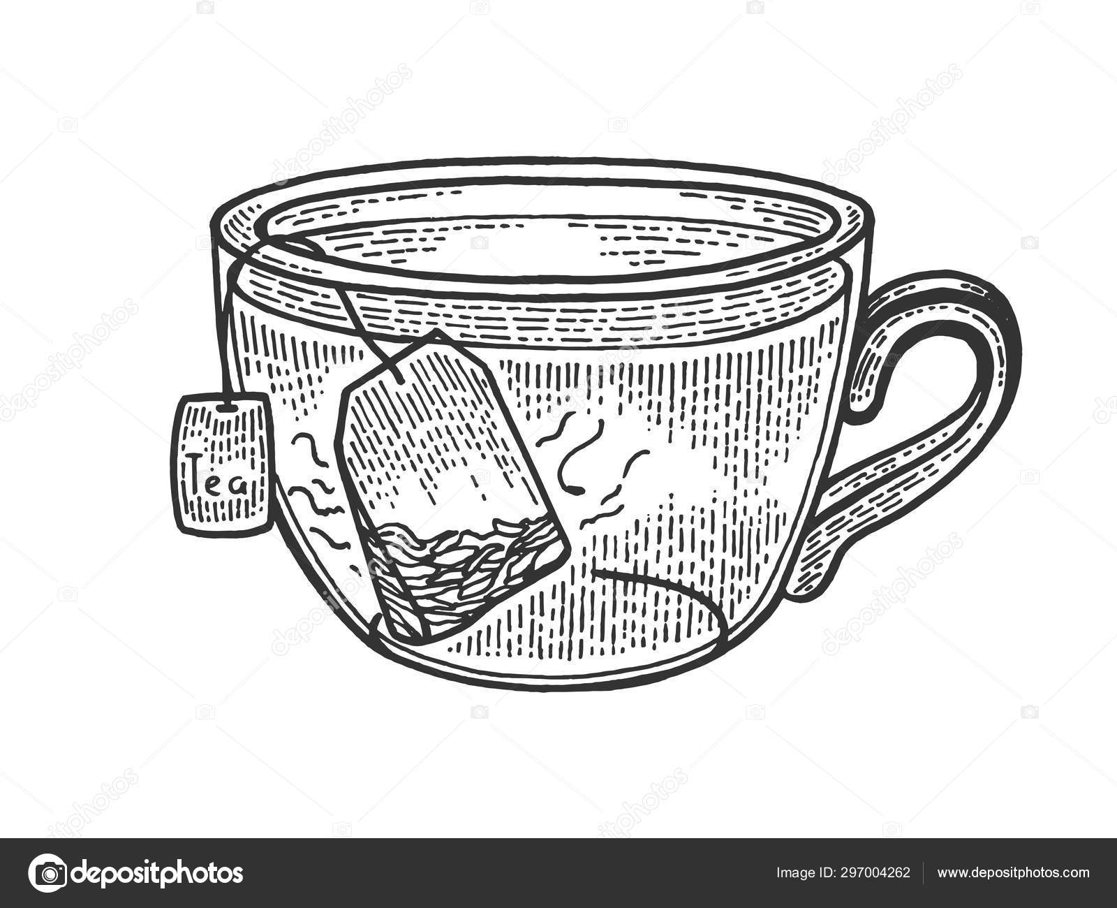 Cup Of Tea With Tea Bag Sketch Engraving Vector Illustration Scratch Board Style Imitation Black And White Hand Drawn Image Stock Vector C Alexanderpokusay 297004262