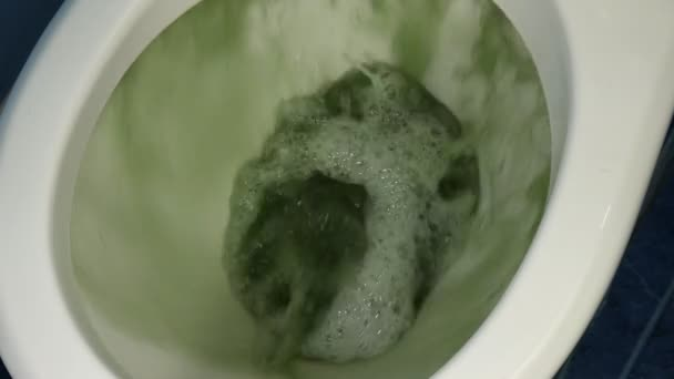 Dirty, rusty and green water in the toilet.