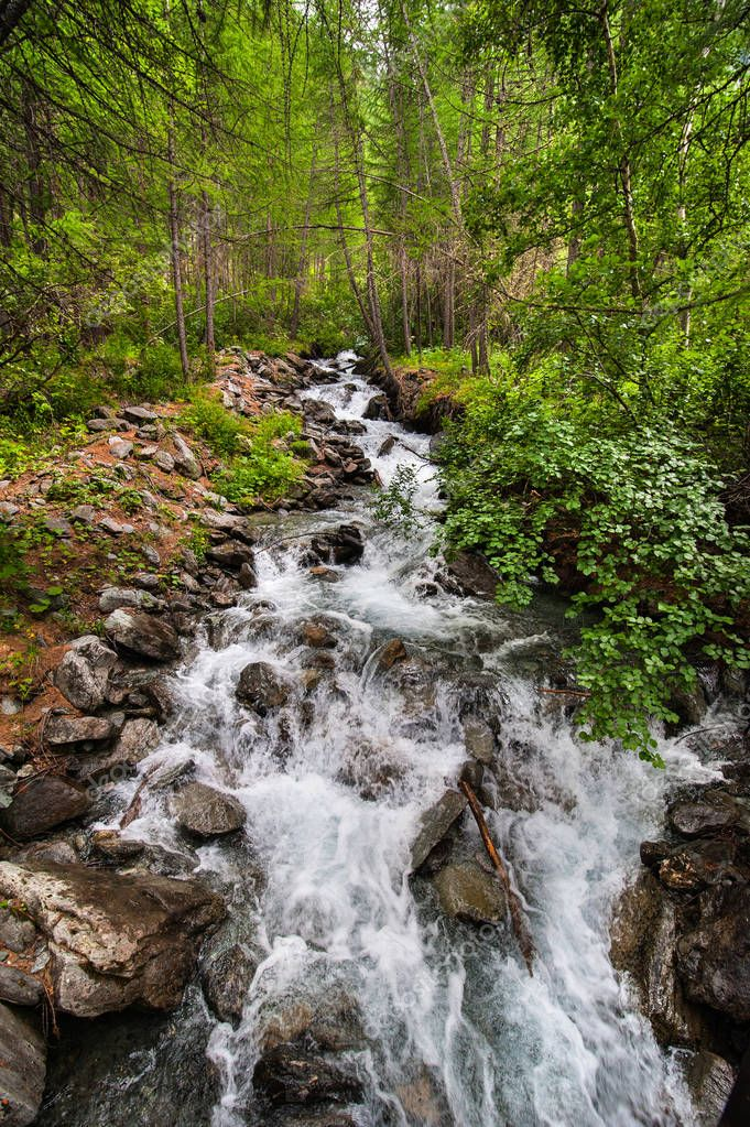 The Sounds of Nature - Small River with the Pure Water from the Glacier in the National Park Gran Paradiso in the North Italy, Aosta, Alpen