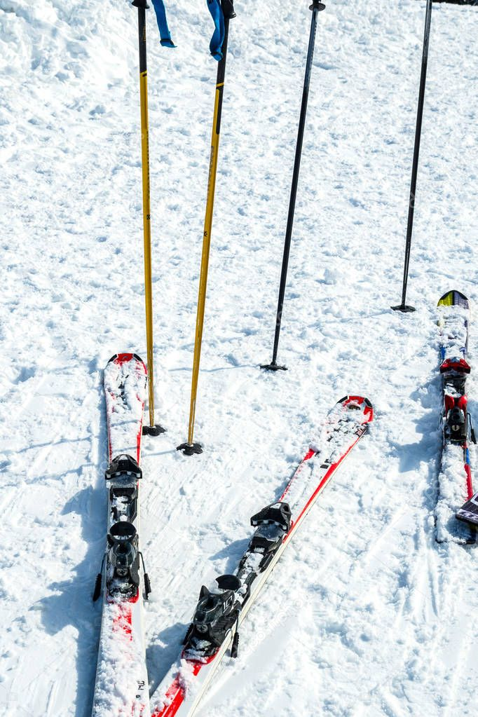skis and snowboards in the snow. Rental of skis and snowboards in the mountains