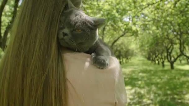 Cat is átölelve vonzó nő. Közeli, macska. Boldog nő, hosszú szőke haja nagy szürke bolyhos macska közelében arcát, és séta a zöld fák sikátorban. Nő simogató egy macska.