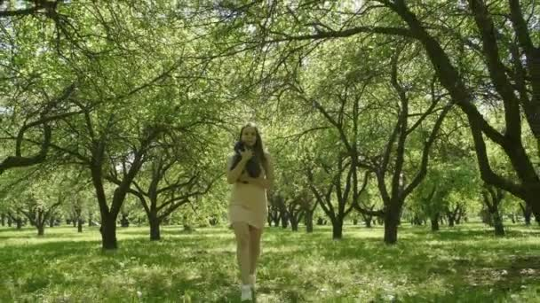 Happy smiling and laughing attractive woman Stroking a Cat and walks through green trees alley in slow motion. Big grey fluffy cat is hugging attractive woman. Woman Stroking a Cat.