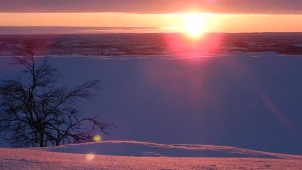 beautiful winter landscape of lappland in finnland