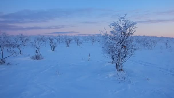 beautiful winter landscape of lappland in finnland