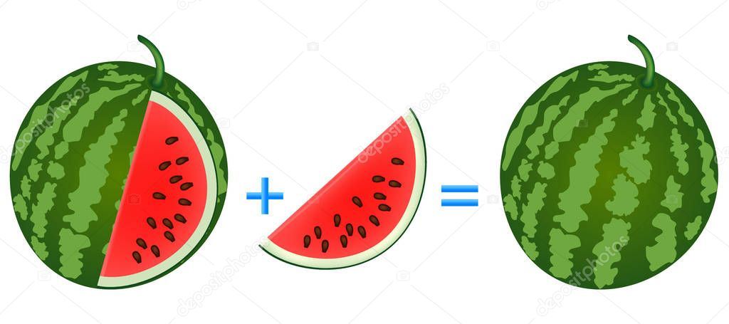 Action relationship of addition, examples with watermelon. Educational game for children.