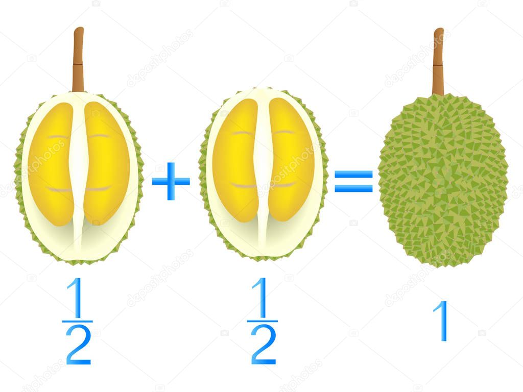 Action relationship of addition halves, examples with durian. Educational game for children.