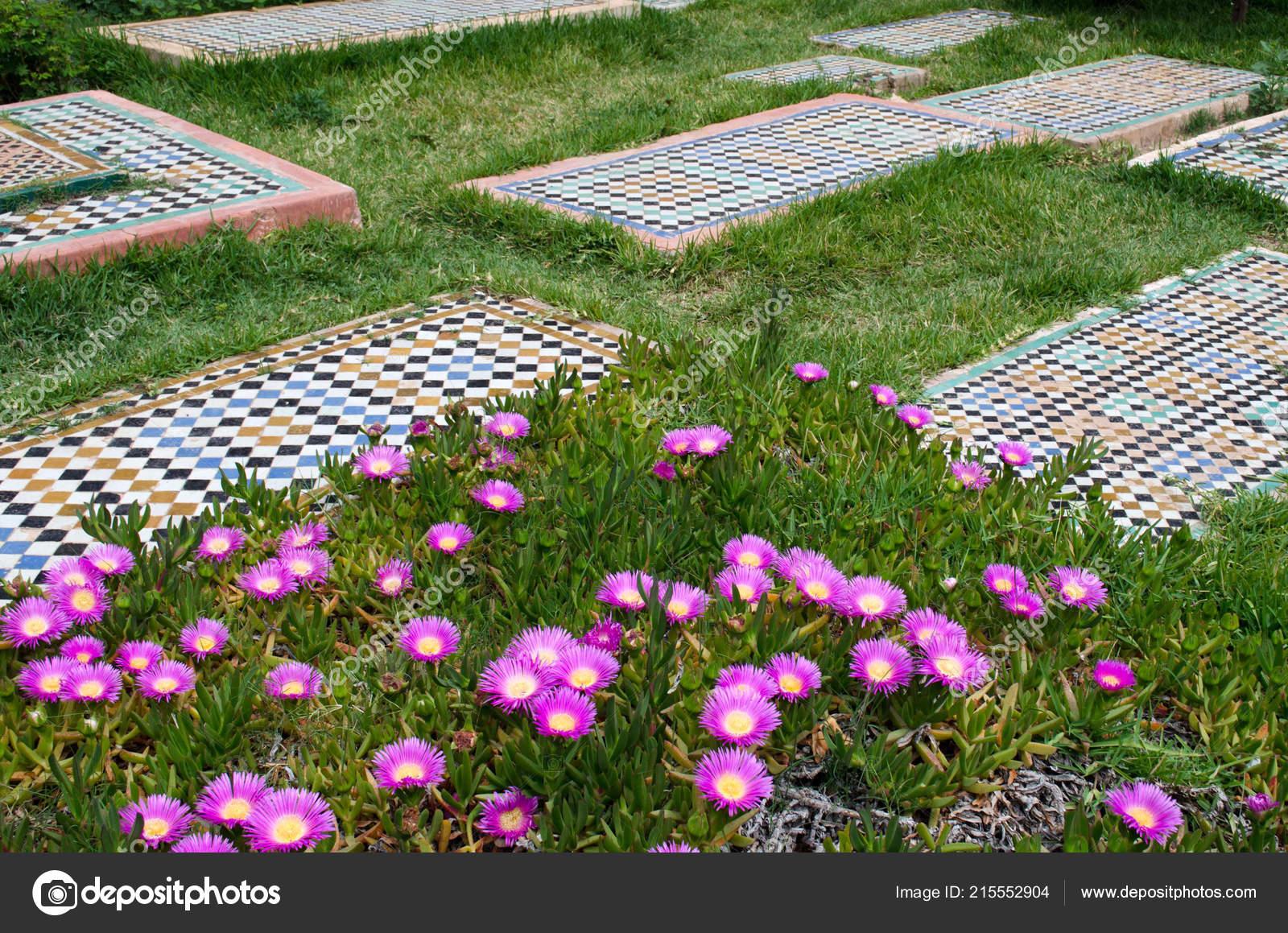 Aiuola con piastrelle verdi erba mosaico u foto stock johndory