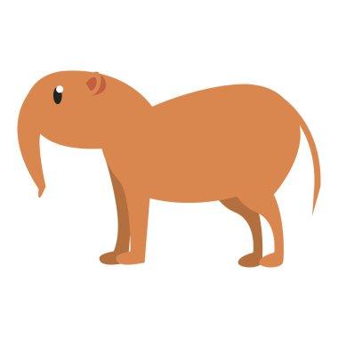 Anteater wild animal