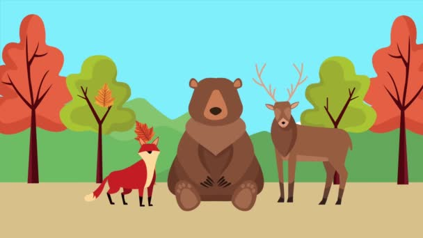hello autumn animation with bear and woodland animals