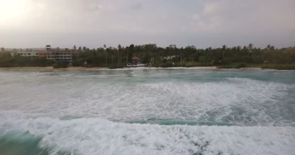 Drone moving backwards from idyllic ocean coast resort with palm trees over waves washing the shore, crashing with foam.