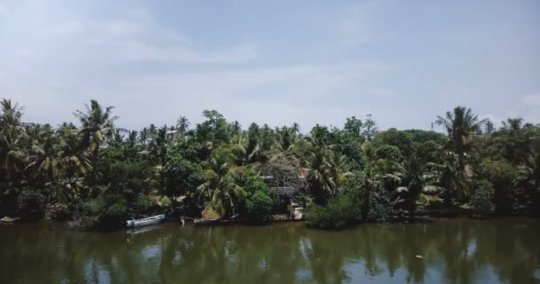 Drone hanging static over rainforest palm trees on exotic river bank and tropical vacation hotels and houses in greenery