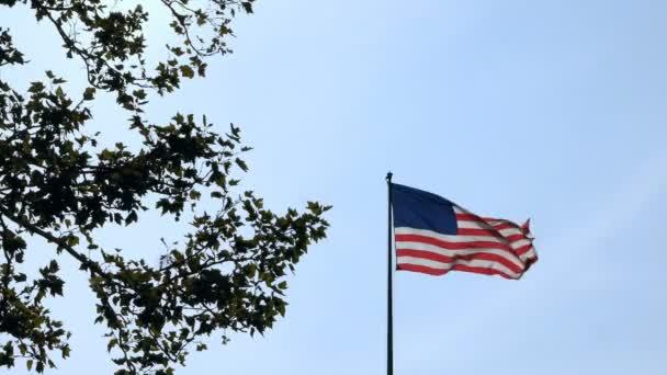 Nízký úhel pohled Vlajka Spojených států amerických mávat ve větru poblíž Zelený strom na široké pozadí jasné modré letní oblohy. Slavné Usa národní symbol svobody a nezávislosti