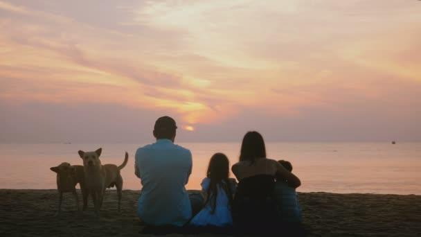 Snímek šťastné rodiny Sit společně sledovat úžasný západ slunce na pláži epické moře dva psi hrají o pohled krásné zezadu.
