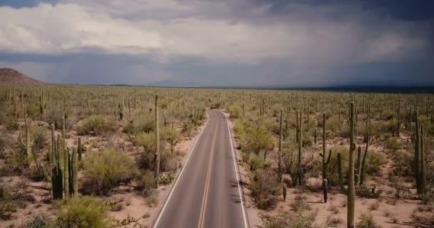 Drone repülő felett szép üres sivatagi út területén nagy Saguaro kaktusz Arizona nemzeti park viharos sivatagban Usa.