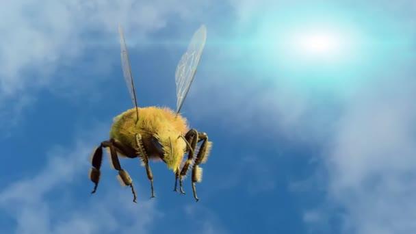 a háttérégbolt repülő méh 3d render