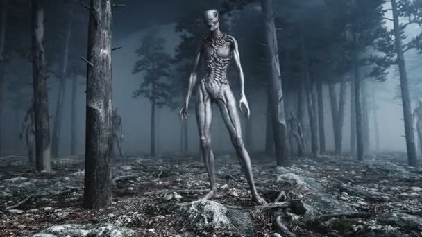 scary monster in fog night forest. Fear and horror. Mistic and ufo concept. Realistic 4K animation.