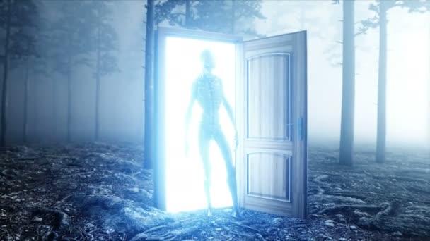 Alien in fog night forest. Light portal door. UFO concept. Realistic 4K animation.