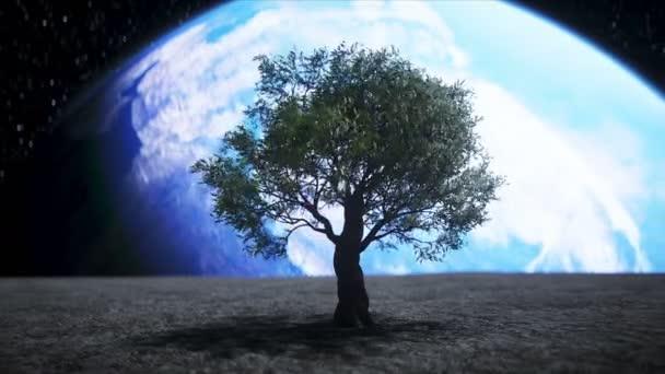 strom na měsíci ve vesmíru. 3D vykreslování.