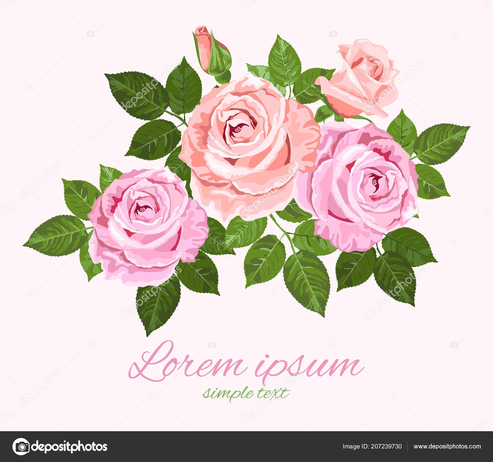 Vector pink beige roses green leaves white background wedding vector pink beige roses green leaves white background wedding invitation vetores de stock stopboris Image collections