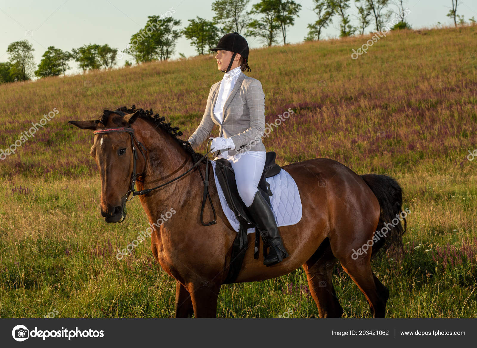 Young Woman Rider With Her Horse In Evening Sunset Light Outdoor Photography In Lifestyle Mood Stock Photo C Nazarov Dnepr Gmail Com 203421062
