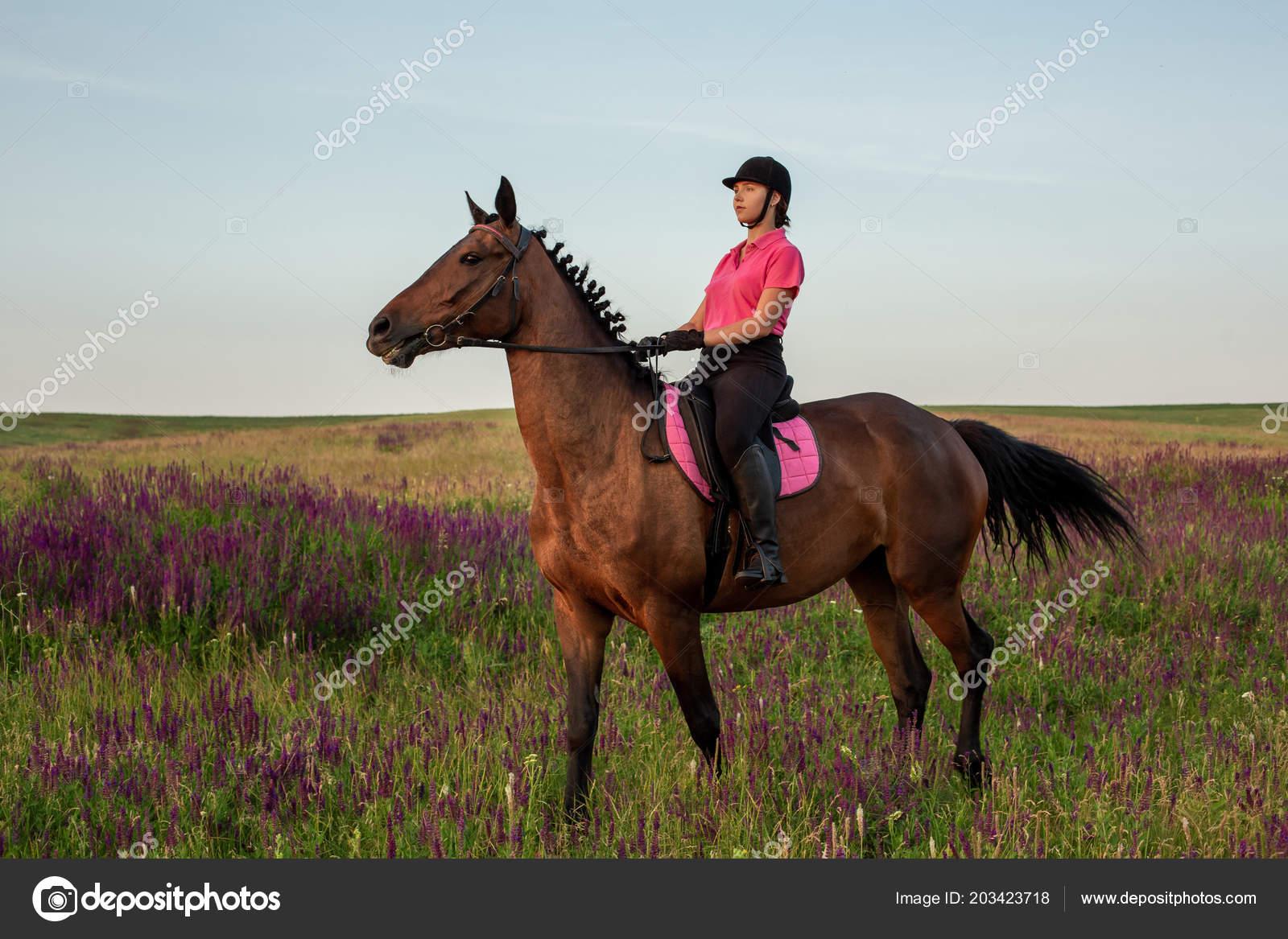 94afe06c4 Amazona jockey cavalo equitação uniforme ao ar livre. Pôr do sol. Passeios  a cavalo. Competição. Passatempo — Foto de nazarov.dnepr gmail.com