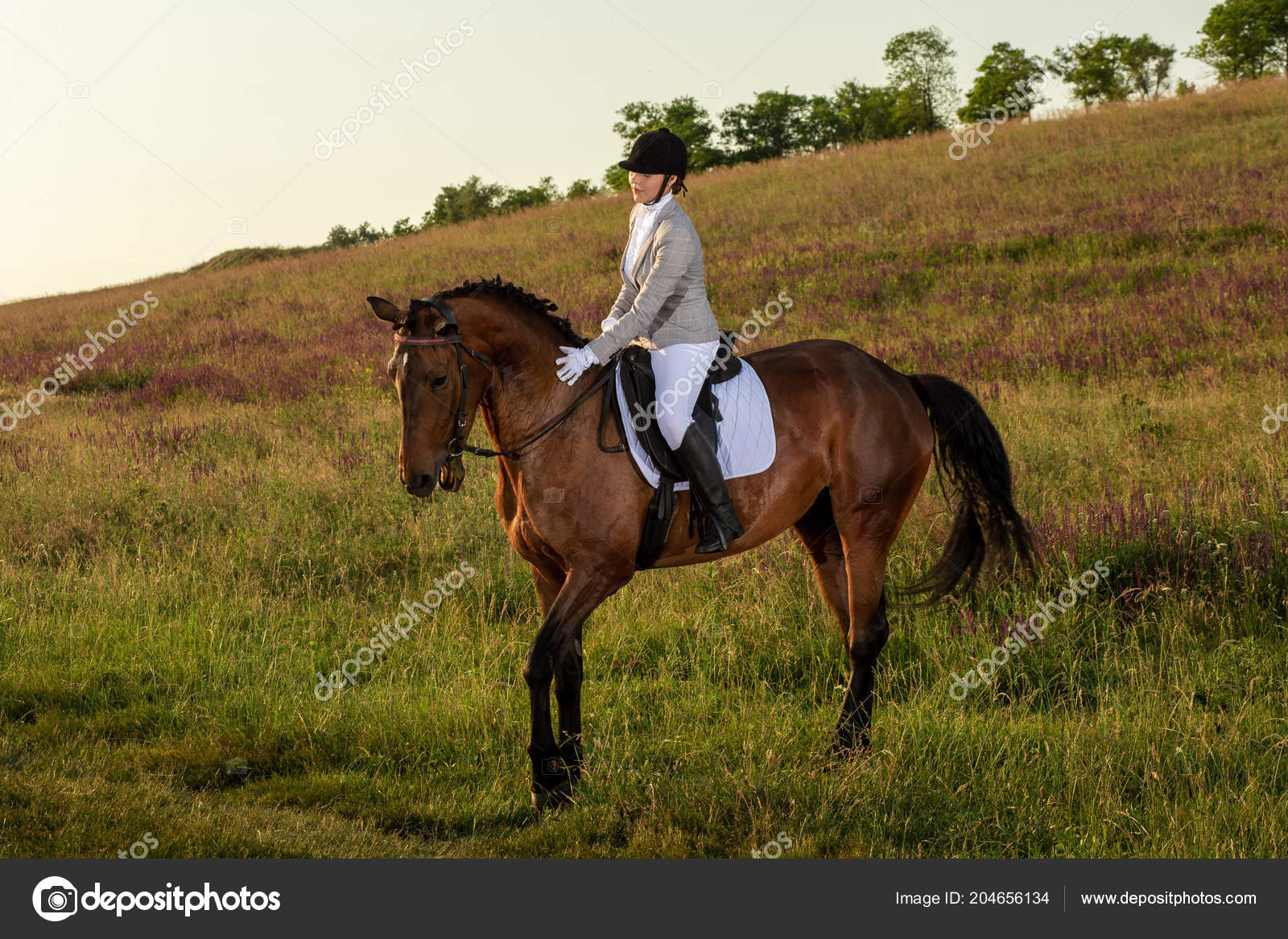 Young Woman Rider With Her Horse In Evening Sunset Light Outdoor Photography In Lifestyle Mood Stock Photo C Nazarov Dnepr Gmail Com 204656134