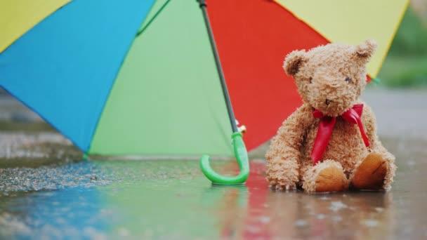 Egy nedves mackó ül egy pocsolya alatt egy esernyő. A szél fúj a esernyő