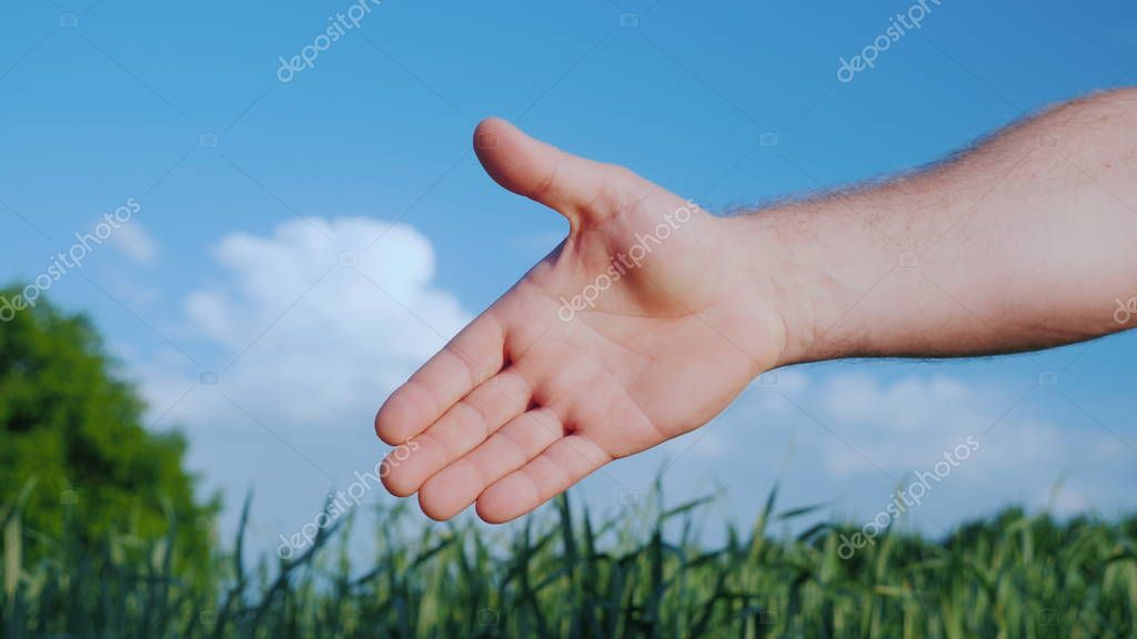 An open hand stretched out for the handshake of a mans hand. Against the background of a green wheat field and a blue sky.