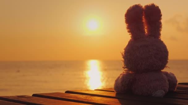 romantische Plüschhase trifft die Morgendämmerung auf der Pore. sitzt auf der Seebrücke, Rückansicht