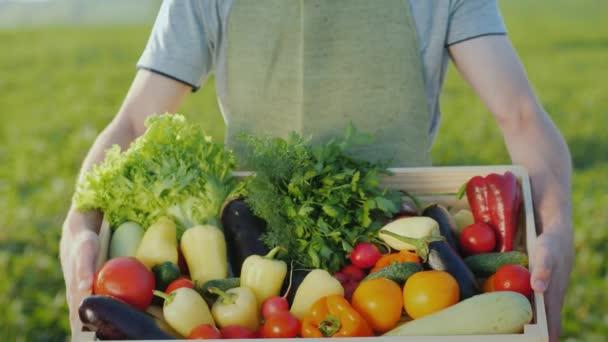 Zemědělec je drží dřevěný box s řadou různých zeleniny. Ekologické zemědělství a zemědělské produkty