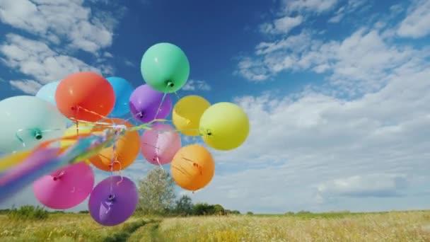 Vítr si hraje s partou balóny proti na krásné zelené louce