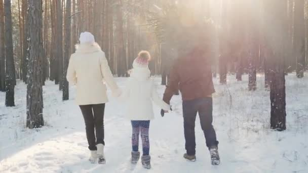 A happy family with a child is walking along a snow-covered forest, the father is carrying a Christmas tree. Christmas Eve and New Years Eve. Rear view
