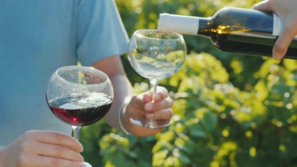 Rotwein in Gläser auf dem Hintergrund der Rebe gießen. Weinprobe