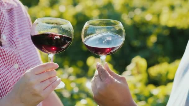 Two hands with glasses of wine, slowly stir it. Wine tour